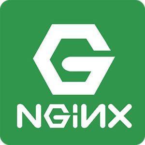 Nginx技术团队